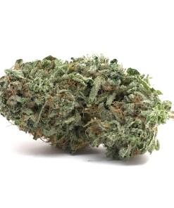 Grape God, Grape GOD Strain, Buy Grape GOD Strain, Buy Grape GOD Weed, Buy Grape GOD Marijuana, Buy Grape GOD Cannabis, Buy Grape GOD Weed