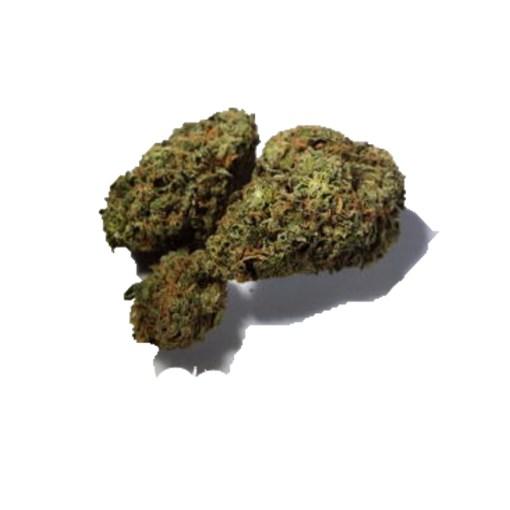 Order AK-47 weed strain online.lEGALGANJADISPENSARY.COM
