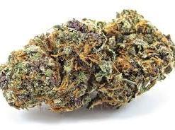 Forbidden Fruit Cannabis Strain
