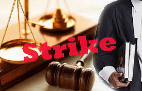 Lawyers should not go on strike: SC