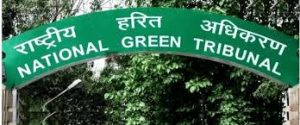 NGT bans dumping of waste near school, issues notice to EDMC