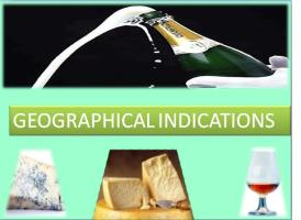 How can I search for geographical indications that have already been registered?
