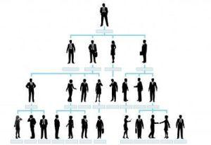 Anwaltsassistenz im Arbeitsrecht