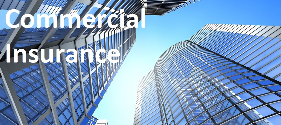 Image Result For Commercial General Liability Insurance