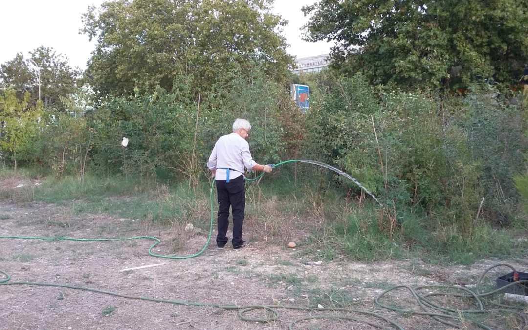 Il Parco Garbatella che resiste alla siccità