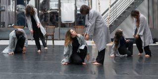 (c) Thierry Giraud   5 juin   Le Témoin   Diffusion d'un projet de transmission pour 14 danseurs amateurs