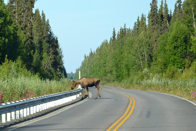 Alaska_Fairbanks 04