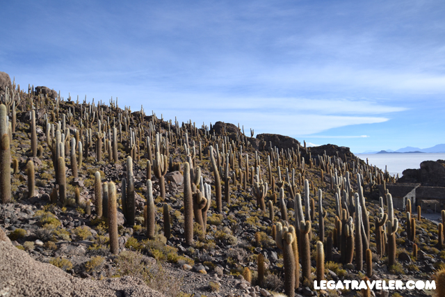 Bolivia_Tour_Salar_de_Uyuni_69