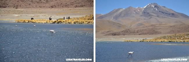 Bolivia_Tour_Salar_de_Uyuni_139b