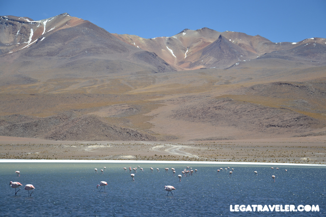 Bolivia_Tour_Salar_de_Uyuni_142