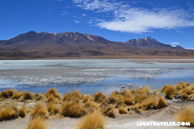 Bolivia_Tour_Salar_de_Uyuni_157