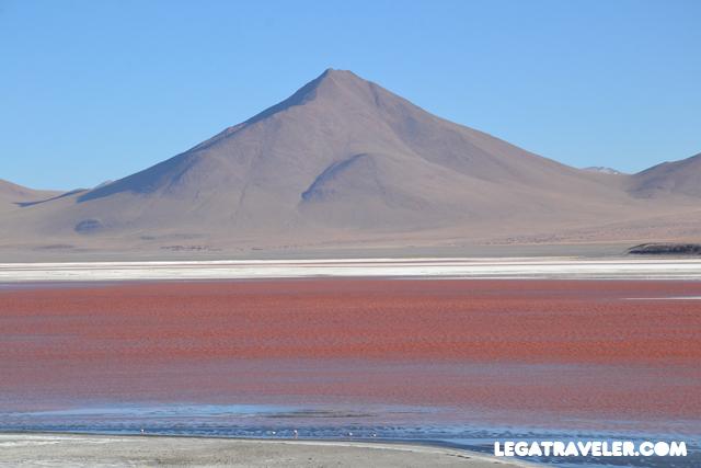 Bolivia_Tour_Salar_de_Uyuni_193_laguna_colorada