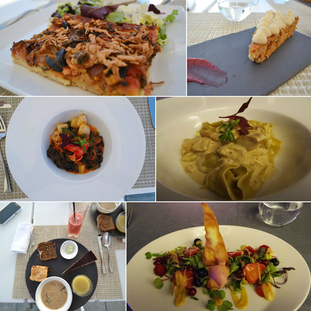 comida macrobiótica sha wellness clinic