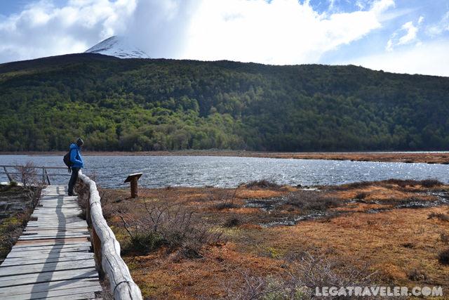 turbales parque nacional tierra del fuego argentina