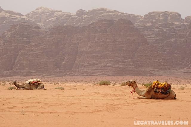 Desierto Wadi Rum - Que ver en Jordania