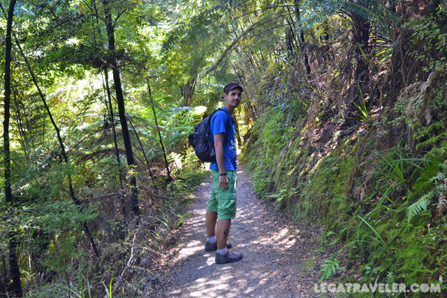 trekking-abel-tasman