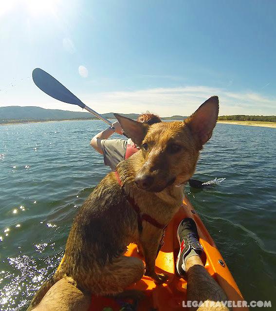 kayak-con-mi-perro