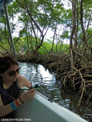 que-ver-en-samana-manglares-haitises