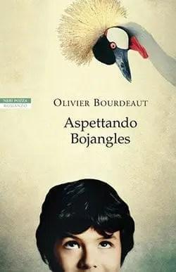 Recensione di Aspettando Bojangles di Olivier Bourdeaut