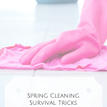Spring Cleaning Survival Tricks & A Free Printable