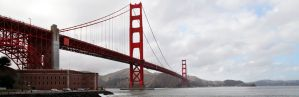 Bay Area Web Design