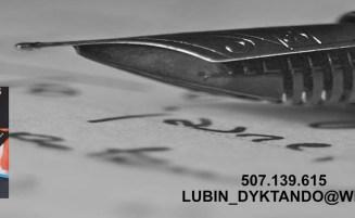 Dyktando – Lubin – 2019