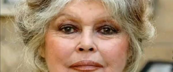 Brigitte Bardot Marilyn Monroe