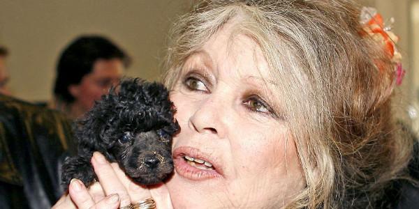 Quand Brigitte Bardot Découvre John Lennon Drogué à Mort