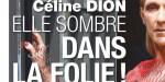 """Céline Dion """"sombre dans la folie"""", gestes inquiétants"""