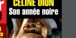 """Céline Dion, """"son année noire"""", elle vit mal la trahison de son fils René-Charles"""