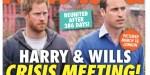 Prince William et prince Harry, retrouvailles secrètes après 386 jours de séparation (photo)
