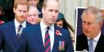 Kate Middleton, le Prince William, un pas en arrière avec Harry - Trop bavard, des allusions personnelles qui passent mal