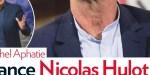 Marion Cotillard, «distance» avec Nicolas Hulot, ciblé par  Michel Aphatie, grand déballage