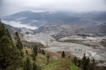 GrandBondMilieu-terrasses_rizieres_Yuanyang_Yunnan (11)