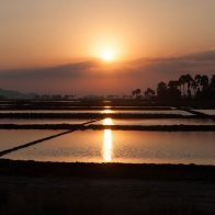 Sunset over salt fields #2