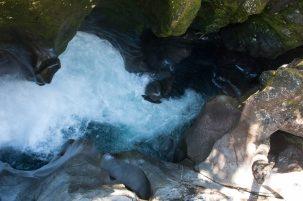 The Chasm - Le gouffre