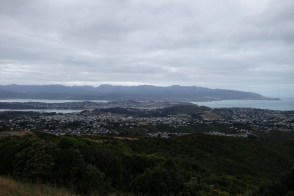 View from Brooklyn, Wellington