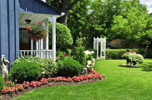 What To Look For When Hiring A Lawn Care Company