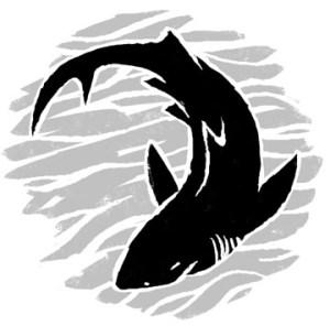 spot_shark