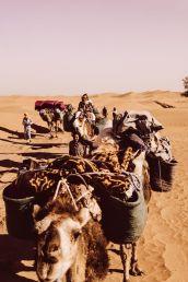 Xiomara Bender: Karawane, Sahara, Südlich der Oasenstadt M'Hamid © Xiomara Bender
