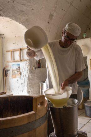 Gaetano-Scirilli-Cheese-Marelli-1001234-1-684x1024