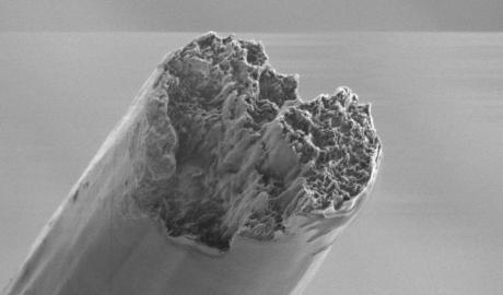 Rasterelektronenmikroskop-Aufnahme einer künstlichen Bio-Zellulosefaser.