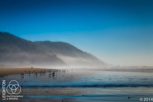 Misty Late Afternoon on Crescent Beach