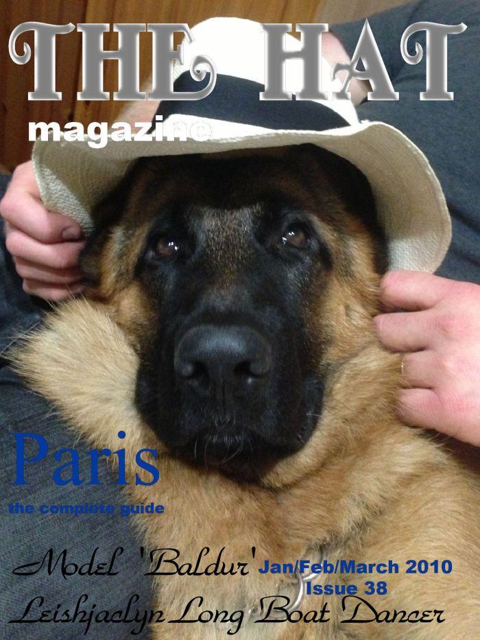 german-shepherd-male-model-Baldur