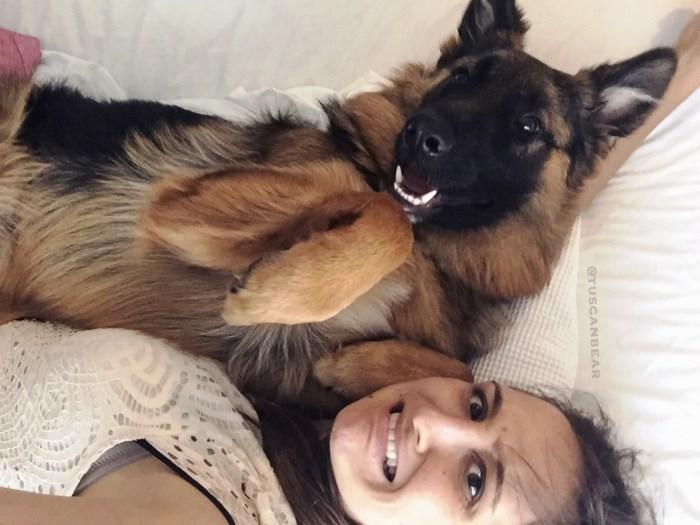 longcoat-male-german-shepherd-smiling-with-mum