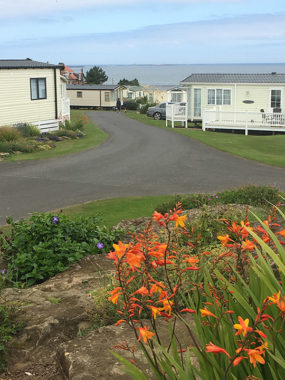 Static caravan park in holiday season