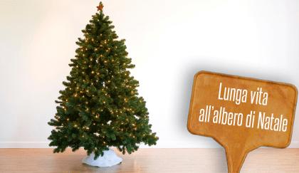 Come Riciclare Lalbero Di Natale Aiutando Il Wwf E La