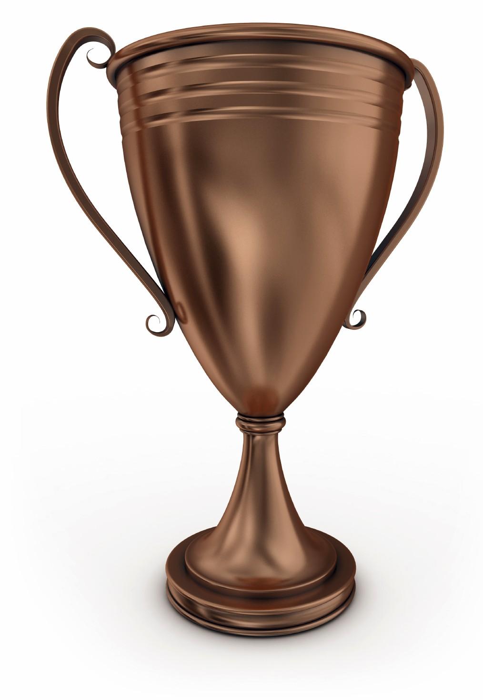 Coupe Bronze Toilettage Le Jardin Des Animaux