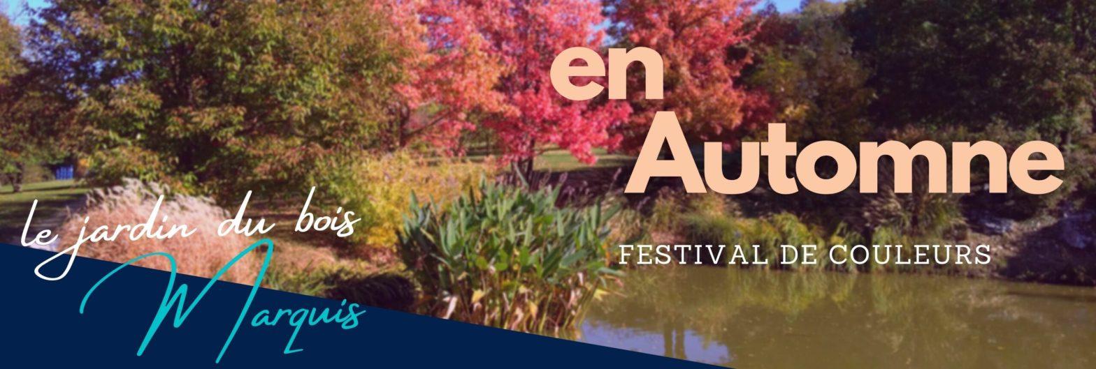 En automne, le feuillage du bois marquis propose un festival de couleurs aux promeneurs les plus réguliers