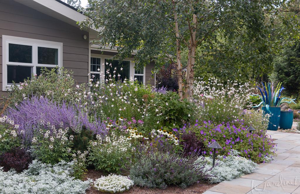 Best drought tolerant perennials annuals that are deer - Drought tolerant plants landscape design ...